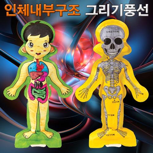 [척척박사네2090] 인체 내부구조 그리기 풍선(인체골격과 내장기관)