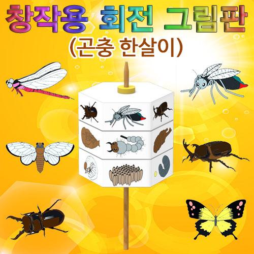 [척척박사네0331] 창작용 회전 그림판(곤충 한살이)