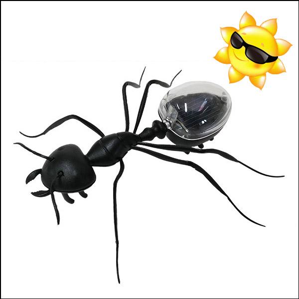 태양광 개미 진동로봇(완성품)