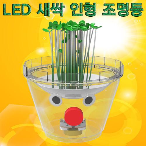 [척척박사네0139] LED 새싹 인형 조명등 만들기(1인용/5인용)