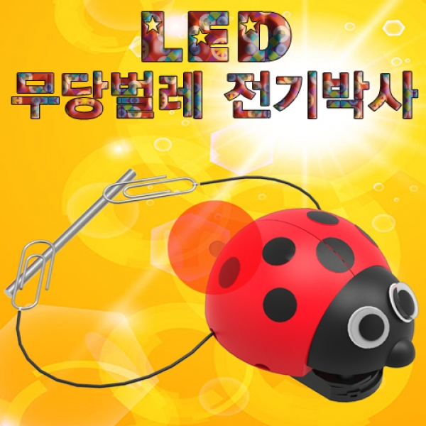 [척척박사네0115] LED 무당벌레 전기박사(1인용/5인용)