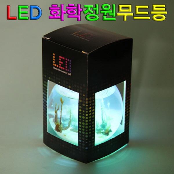 [척척박사네2164] LED 화학정원 무드등만들기(5인용)