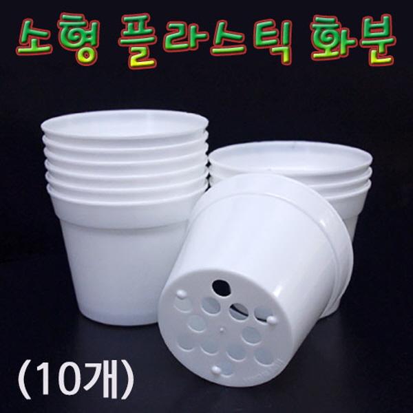 [척척박사네2110] 소형 플라스틱 화분(10개)