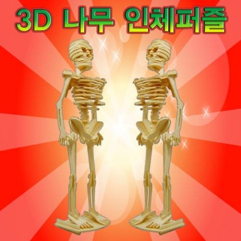 [척척박사네2010] 3D 나무 인체퍼즐